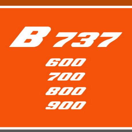 B-737NG.jpg